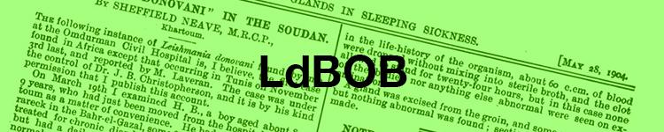 LDBob